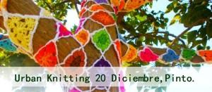 yarn bombing pinto